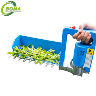 Small Tea Leaf Plucking Machine with 24V 8AH Battery Backpack