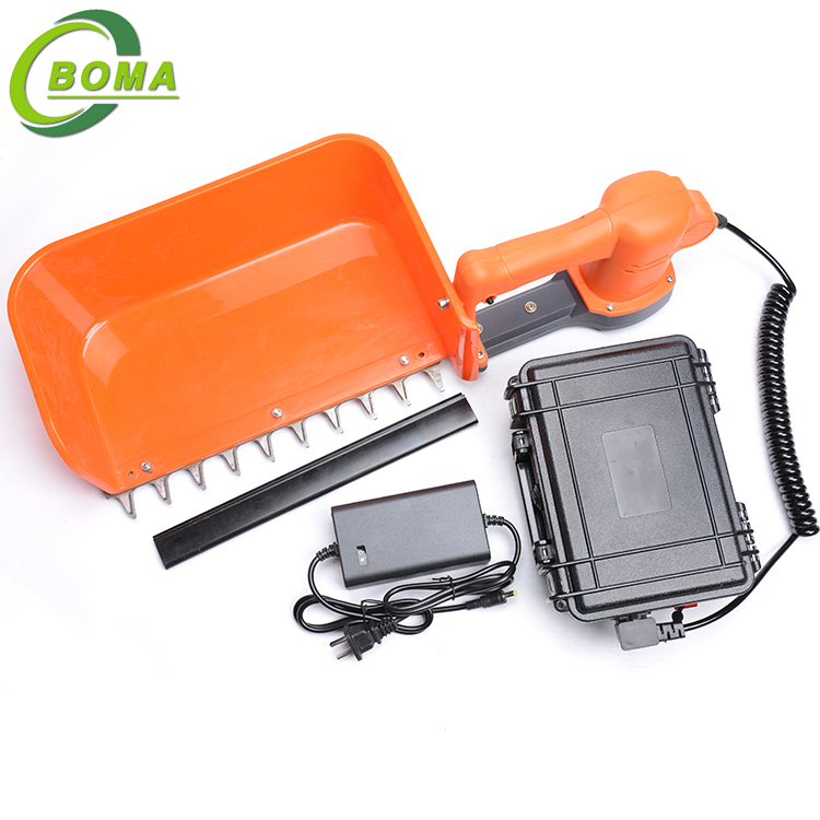 BOMA BMTH-300 Mini Tea Plucking Machine with Big Container for Sprout Grower