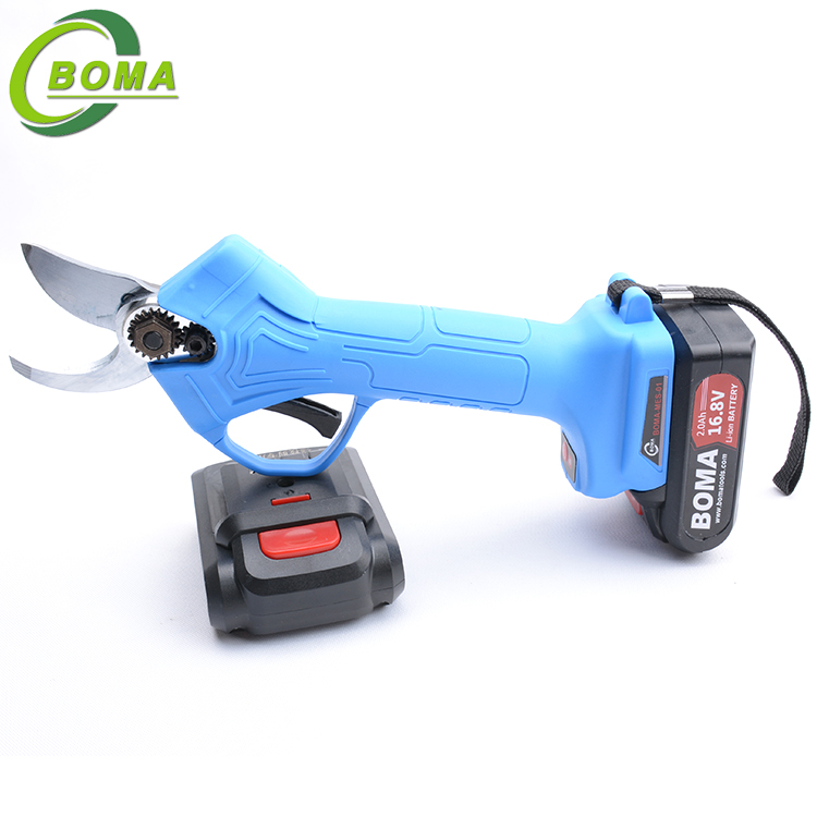 Manufacturer Supply Tainless Steel Cutting Tree Pruner Shears for Agricultural Use
