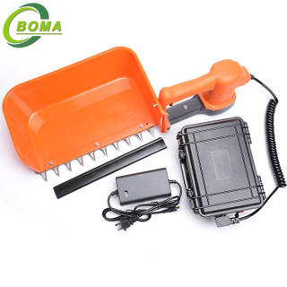 Hot Ordering BOMA-BMTH-300 Tea Leaves Plucking Machine for Tea Garden Hedges Green Belt