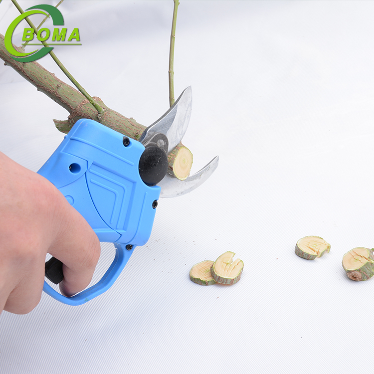 New Invention Curved Blade Scissors Cutting Clipping Tools for Farm Field
