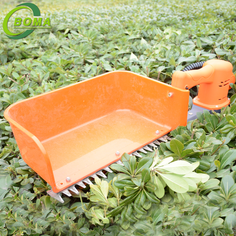 Industrial BOMA-BMTH-300 New Green Tea Collection Machine for Tea Plantation